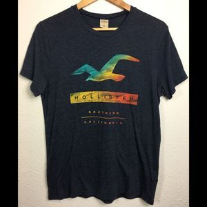 Hollister M Sunset Seagull Logo T- Shirt